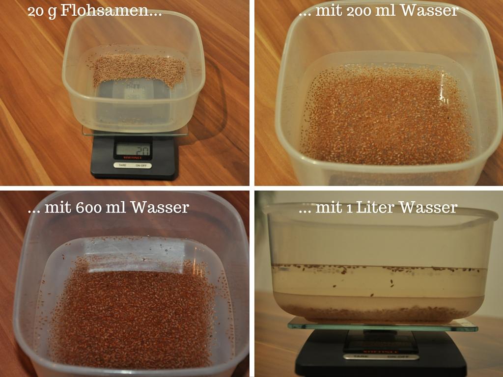 20 gFlohsamen und ein Liter Wasser