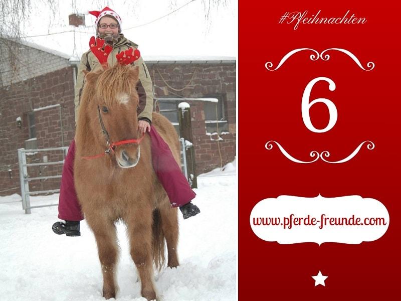 Auf dem Wunschzetel meines Pferdes steht, dass ich wieder bewusster bei ihm sein soll - so wie auf dem Bild, wo wir vor einigen Jahren sehr vil Spaß im Schnee hatten